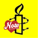 Amnesty Int'l NI