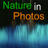 The profile image of NatureinPhotos