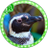 The profile image of EciLL