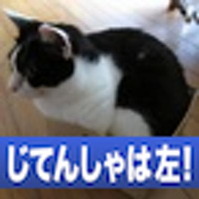 ネコ吉 | Social Profile