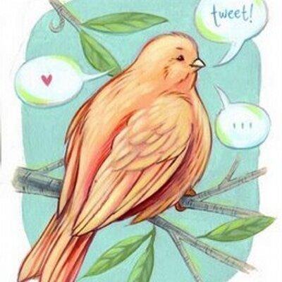 Birdy Wire   Social Profile
