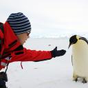 Everyday.penguin