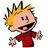Calvin normal