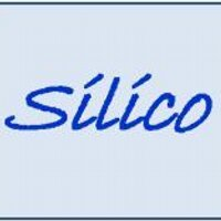Silico Corporation | Social Profile