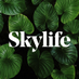 Skylife's Twitter Profile Picture