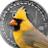Cardinal Crypto
