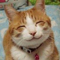 Catsduke☆猫公爵 | Social Profile