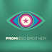 Promi Big Brother's Twitter Profile Picture