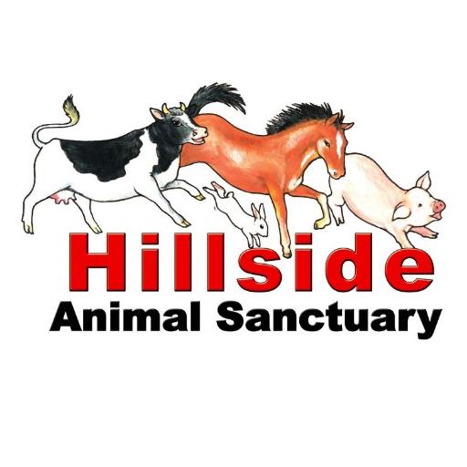 Hillside Animals