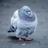 The profile image of tw00_tankobu444