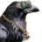 Casino Crow