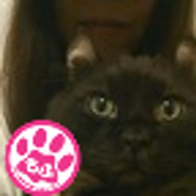 黒猫クウガ【黒猫屋10周年】 | Social Profile