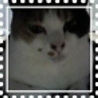 IC U-こ | Social Profile
