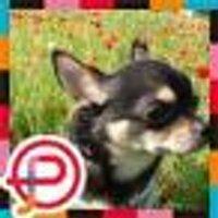 Kazuho  Masuda | Social Profile