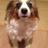 The profile image of bun10rou