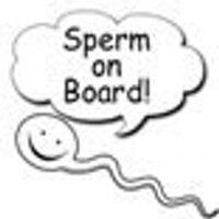 The Pregnant Bloke | Social Profile
