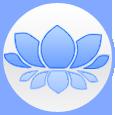 NYWellnessGuide Social Profile