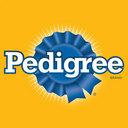 Photo of PedigreePR's Twitter profile avatar