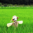 The profile image of agri_jp