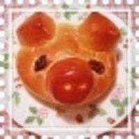 kikumaru | Social Profile