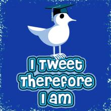 Tim@Sogeshirts Social Profile