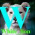 @whitelion117