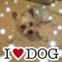クーちゃん@胸熱サザン☆ | Social Profile