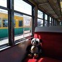 大熊猫番長