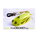 Photo of theCRICKETtoy's Twitter profile avatar