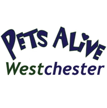 Pets Alive West Social Profile