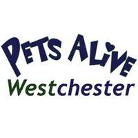 Pets Alive West | Social Profile