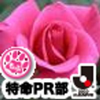 teresa_jp   Social Profile