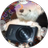 The profile image of you_sorayume
