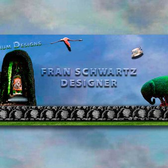 Fran Schwartz   Social Profile
