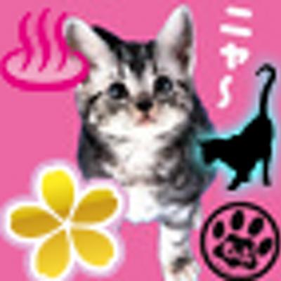 ちーちゃん | Social Profile