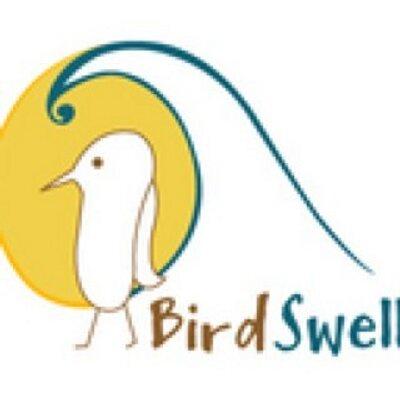 BirdSwell | Social Profile