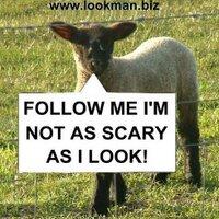 Lookman_   Social Profile