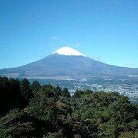 MoriMori | Social Profile