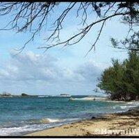 Nuuanu Mele | Social Profile
