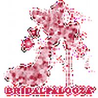 BRIDALPALOOZA TOURS | Social Profile
