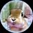 The profile image of kotetsu_mmd