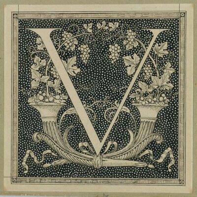 James Vongard [ V ] | Social Profile