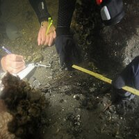 Maritime Archaeology | Social Profile