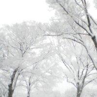 akikois( ´ ▽ ` )ノ | Social Profile