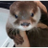 The profile image of minakuagt2