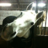 @talking_horse