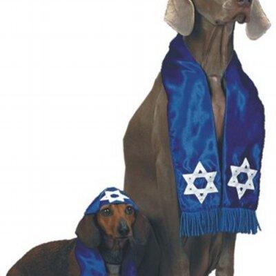 Zionist Lapdog | Social Profile