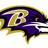 Baltimore Ravens Fan