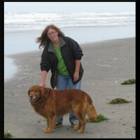 Sandra Ormandy   Social Profile
