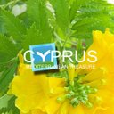 Photo of cyprustourism's Twitter profile avatar